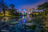 Intermission (t3cnica) Tags: city longexposure travel trees reflection water architecture garden landscapes twilight pond singapore downtown cityscapes tranquility bluehour dri tranquil mbs waterscapes marinabay travelphotography dynamicrangeincrease exposureblending digitalblending gardensbythebay marinabaysands supertrees