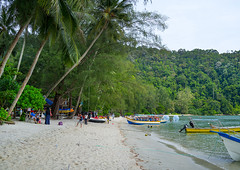 Boats on monkey beach in nan national park, Penang island, George town, Malaysia (Eric Lafforgue) Tags: park sea tree green tourism beach nature horizontal landscape boats outdoors monkey bay scenery asia southeastasia natural indianocean tourists georgetown palm exotic national transportation malaysia tropical vegetation penang nan malaysian groupofpeople penangisland monkeybeach pulaupinang penangstate colourimage telukduyung malay3214 nannationalpark