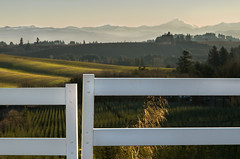 First light of the New Year (docoverachiever) Tags: white mountains oregon sunrise fence landscape scenery gap hills mtjefferson cascades rolling challengeyouwinner flickrchallengegroup cyunanimous