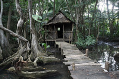 Indian River Witch Hut Pirates filming site (Entangled Photons) Tags: pirates caribbean dominica karibik