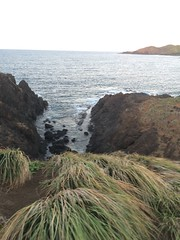 IMG_3518 (elleica) Tags: summer vacation beach islands whitebeach daet camarinesnorte calaguasislands