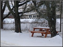 Trees, Snow & Bench Close-Up - Photo by STEVEN CHATEAUNEUF - December 31, 2015 (snc145) Tags: park trees winter sky usa building nature bench landscape fun photo scenery seasons massachusetts coldweather soe chelmsford autofocus sharpness thisphotorocks flickrunitedaward stevenchateauneuf december312015