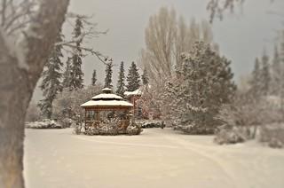 Garden View - Smeltzer House # 12