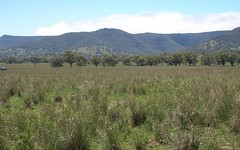 Pandora, Coolah NSW