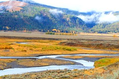 Soda Butte Creek in Yellowstone NP WY 854A2616 (lreis_naturalist) Tags: soda butte creek yellowstone national park wyoming