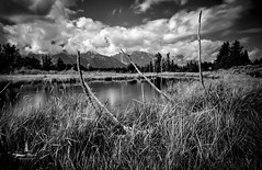 tetons_2016_2web (Jessica Haydahl Photography) Tags: grand teton national park wyoming tetons mormon row john molton barn apsens fall colors infrared photography nikon d810 d7000 pentax 645z medium formate landscape ansel adams