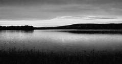 Grey day (sakarip) Tags: sakarip lake blackandwhite landscape taivalkoski finland north loukusa monochrome water serene northern