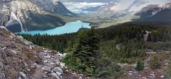 IMG_20160930_131856056_HDR-PANO (ctmarie3) Tags: banffnationalpark peytolake