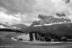 Siusi, i prati di Telfen (Gian Floridia) Tags: bz seisamschlern siusiallosciliar telfen bn bw bienne meadows prati road serpeggiante strada winding
