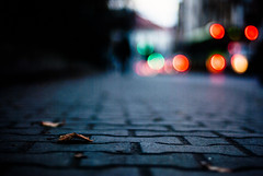 unnoticed (ewitsoe) Tags: bokeh ewitsoe nikon poland leaf fall atuumn sidewalk dof city urban lines balls bokehpeople ewitseo nikond80 35mm street cityscape urbanite
