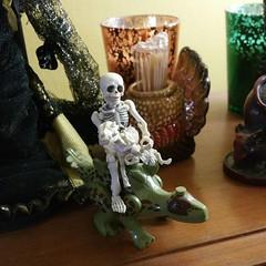 Dino-mite (trinlayk) Tags: instagramapp square squareformat iphoneography uploaded:by=instagram mort anubis dolls rementskeleton rement skeleton skelepose