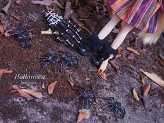 Halloween ^__^ está chegando!