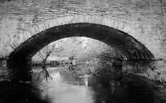 Bridge. (cymrost) Tags: bridge betwsycoed wales river