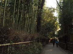 Arashiyama Bamboo Grove (M_Strasser) Tags: arashiyamabamboogrove arashiyama bamboo bambus japan kyoto olympus olympusomdem1