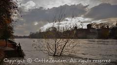 Torino (41) (cattazen.com) Tags: alluvione torino po esondazione parcodelvalentino murazzi pienadelpo cittditorino turin piemonte