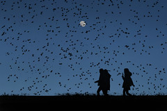 Pjaros en la cabeza (una cierta mirada) Tags: birds silhouettes nature sky sunset moon girls walking landscape blue black luna fullmoon dream hitchcock