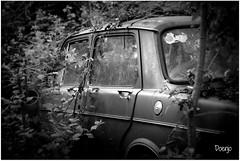 El final del viaje (Doenjo) Tags: abandono sannicolasdelpuerto coche instagram sannicolásdelpuerto canon450d