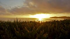 Sunset at Carmel (Andr Felipe Carvalho) Tags: sunset pordosol nikon carmel d7200