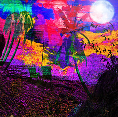 Where We used To Sit (virtually_supine) Tags: beach photomanipulation landscape chairs creative vividcolour textures palmtrees expressionist moonlight layers digitalartwork photoshopelements9 kreativepeopletreatthis96 tt96sourcebyskagitrenee