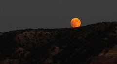 Bad moon rising (chasblount) Tags: autumn red sky usa moon mountain color fall nature rock night canon dark landscape photography photo texas nightscape unitedstates photos outdoor dusk scenic canyon luna hills moonrise nightsky harvestmoon lunar panhandle bloodmoon palodurocanyon bloodred canoneos50d canonef70210mmf4 supermoon