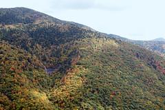 Glassmine Falls in Fall (adroach) Tags: autumn fall northcarolina overlook blueridgeparkway leafpeeping glassminefalls
