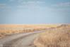 open skies (Sun Spiral) Tags: australia outback grasslands barkly cattlestation sturtplains