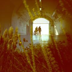 guidance (fotobes) Tags: people plants sunlight grass silhouette lights xpro crossprocessed couple brighton doubleexposure crossprocess tunnel pinhole lookingup grasses holdinghands pinholecamera walls kodake100vs foottunnel ratseyeview mikemclean filmswap lca120