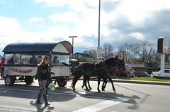 2015 Christmas Parade (Adventurer Dustin Holmes) Tags: horses horse parades parade missouri equestrian christmasparade 2015 lebanonmo xmasparade lebanonmissouri lacledecounty