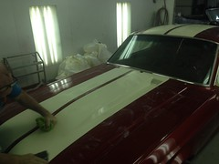 """1968 Mustang • <a style=""""font-size:0.8em;"""" href=""""http://www.flickr.com/photos/85572005@N00/23028139383/"""" target=""""_blank"""">View on Flickr</a>"""