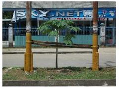 jasa-perbaikan-tiang-listrik-wilayah-sumatera-selatan-jambi-dan-bengkulu-lokasi-muara-bungo-1 (ramdhanijaya) Tags: tiang listrik perbaikan