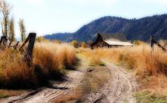 Returning To The Barn (Robert F. Carter Travels) Tags: barn nationalpark barns teton tetons nationalparks thegrandtetons thetetons moultonbarn thegrandteton thegrandtetonnationalpark