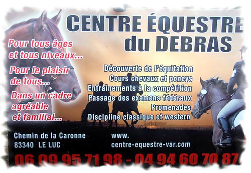 Manège & poneys (17)