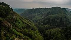 Tebing Keraton (nipuna.dh) Tags: west ex java rocky sigma bandung dg kraton 1530 keraton f3545 tebing