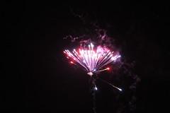 IMG_8469 (==PS==) Tags: night dark evening fireworks explosion guyfawkes firework bang bonfirenight gunpowder