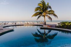 Amanecer en Holbox (Lidia Chvez) Tags: travel beach pool mxico sunrise 35mm reflections palms mexico island nikon playa amanecer isla reflejos viajar palmas alberca holbox holboxisland mxicolindoyquerido visitmxico nikond5100 mybestphoto2015 mismomentos2015