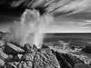 """_C125814 """"As above, so below ..."""" (RDPress) Tags: seascape monochrome landscape blackwhite voigtlander olympus gloucester 21mm capeann m43 bassrocks colorscopar epl2"""