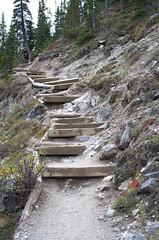 DSC_6238 (AmitShah) Tags: banff canada nationalpark