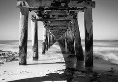 Pier (Farhat M) Tags: pointlonsdale pier shore seascape waves seaweed pillars broadwalk planks cloudlesssky sky nuts nails moss blackandwhite monochrome architecture column outdoor water lee filters 1635mm canon 70d victoria australia