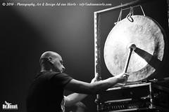 2016 Bosuil-Pink Floyd Sound 3-ZW
