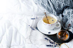 Warm knitted sweater,cup of hot tea (lyule4ik) Tags: tea cup nobody life breakfast details living cozy still home house bed soft morning lifestyle comfortable relaxation winter room mood cold warm tray woolen autumn spoon pages time fall indoors reading hot sofa leisure free wooden scene inspiration domestic book textile view brown sweater chocolate top design sweet knitted point