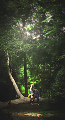 Forever Young (taylormackenzie) Tags: couple boyfriend girlfriend vertical outside woods tree arc love loving holding hands lens flare bokeh leaves sky sunny sunlight happy smiles young forever boots autumn fall dress depth focus