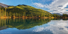 Forget Me Not Pond, AB (Margarita Genkova) Tags: forget me not pond alberta hill mountain water trees fall reflection