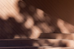 Queenston Shadows (josullivan.59) Tags: wallpaper 3exp texture tamron150600 ontario outside october pattern artisitic abstract shadow day detail light lightanddark canon6d canada clear brown nicelight naturallight minimalism 2016