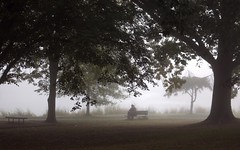 Alone in a Park (chantsign) Tags: park bench person sitting trees foggy fog morning mist alone dark moody