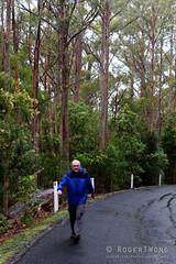 20161018-03-Point to pinnacle training (Roger T Wong) Tags: 2016 australia hobart mtwellington rogertwong sel2470z sony2470 sonya7ii sonyalpha7ii sonyfe2470mmf4zaosscarlzeissvariotessart sonyilce7m2 tasmania wellingtonpark hail portrait rain walk