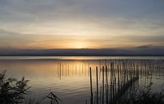 L'Albufera - Valencia (INSAX) Tags: albufera valencia lalbufera landscape water nature