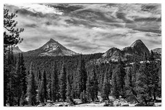 Eichorn's Pinnacle. A view from the Tuolumne Meadows to Glen Aulin section of the Pacific Crest Trail. #hiking #tuolumnemeadows #pacificcresttrail #pct #october #landscape #blackandwhite #glenaulin#mountains #monochrome #scenic #fall (pmobiled) Tags: blackandwhite landscape glenaulin monochrome tuolumnemeadows mountains october scenic pct hiking fall pacificcresttrail