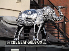 #48 The Beat Goes On by Tom J Newell, Herd of Sheffield 2016 (Dave_Johnson) Tags: herdofsheffield elephant sheffield southyorkshire thebeatgoeson tomjnewell tomnewell herd elephants art streetart sculpture sheffchildrens sheffieldchildrenshospitalcharity sheffieldchildrenshospital childrenshospitalcharity childrenshospital thegreatgatsby greatgatsby pub publichouse ale beer divisionstreet