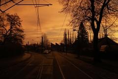 Morgens halbacht in Pankow (thmlamp) Tags: sonnenaufgang morgens sunrise smog luftverschmutzung berlin pankow licht sonne sun draussen