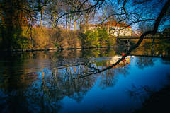 City nature (Maria Eklind) Tags: canal malm nature reflection spegling citynature outdoor tree kanal sweden skneln sverige se
